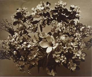 Wreath of flowers, photograph by Adolph Braun & Co, about 1855. Museum no. 76:352. © Victoria and Albert Museum, London