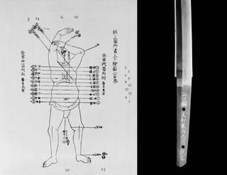 Diagram blade
