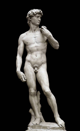 Photo of Plaster cast of Michelangelo's 'David' by Clemente Papi, 1856, Florence, Italy. Museum no. REPRO.1857-161. © Victoria and Albert Museum, London