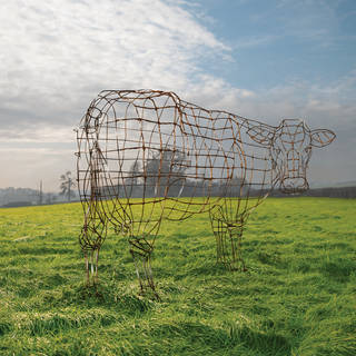 Atom heart mother 40th   wire cow 2