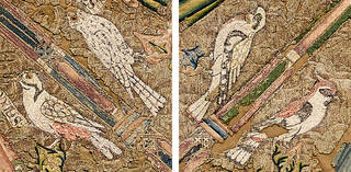 Birds composite