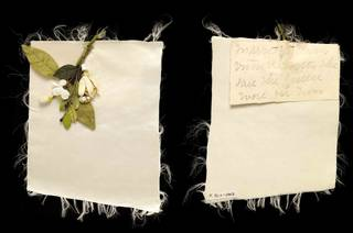 Textile cutting with artificial flower and manuscript note (front and back view), about 1885, possibly England. Museum no. T.35:1 to 35:1-2012. © Victoria and Albert Museum, London