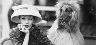 Members' Preview Day: Balenciaga: Shaping Fashion photo