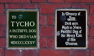 Dog plaques 1000px