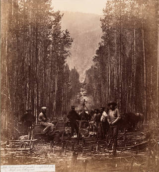 Royal Engineers, Cutting on the 49th Parallel, on the Right Bank of the Mooyie River Looking West, about 1860. Museum no. 40090