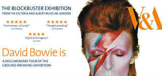 Dinner and a Movie: 'David Bowie is' with Curator Q&A photo
