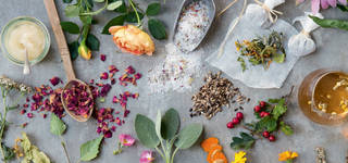 Plants & Potions: Botanical Cocktail Tasting photo