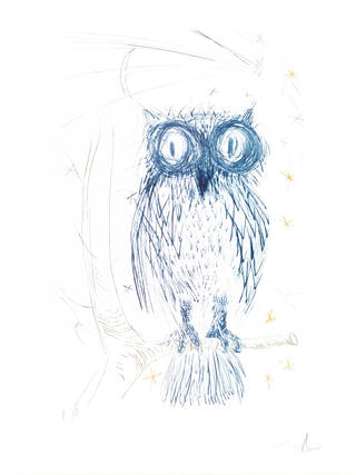 Owl, colour drypoint on paper, Salvador Dalí, 1968. Museum no. E.230-1994. © Victoria and Albert Museum, London/Dalí Foundation