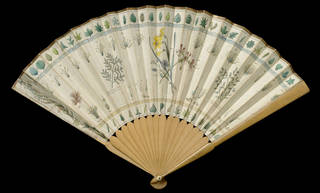 'The Botanick Fan' (front), printed and hand-coloured paper, yew and sycamore, Sarah Ashton, London, 1792. Museum no. T.182-1915. © Victoria and Albert Museum, London