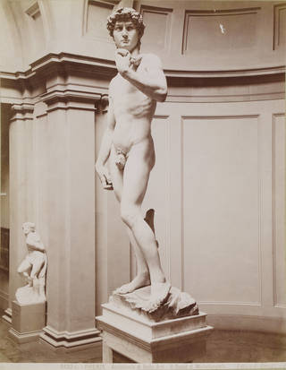 Michelangelo's David in the Accademia di Belle Arte, Florence, photograph by Edizioni Brogi, about 1857. Museum no. REPRO.1857-161. © Victoria and Albert Museum, London