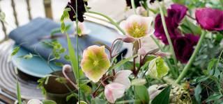 Philippa Craddock: Floral Art photo