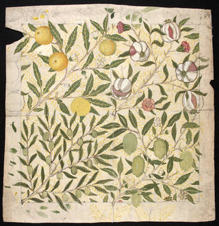 Photo of Fruit, wallpaper design, William Morris, 1862, England. Museum no. E.299-2009. © Victoria and Albert Museum, London