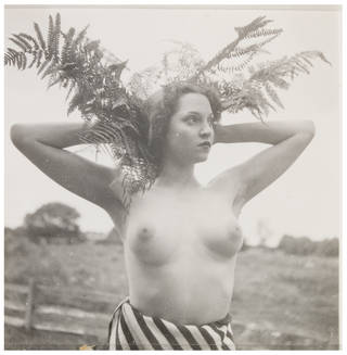 Nude, photograph by Curtis Moffat, about 1925 – 30. Museum no. E.1305-2007. © Victoria and Albert Museum, London/Estate of Curtis Moffat