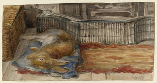 Peter Piper asleep by the fire at Lingholm, Keswick, by Beatrix Potter, August 1899, watercolour and pencil on paper. Museum no. LC 18/A/3. © Victoria & Albert Museum, London, courtesy Frederick Warne & Co Ltd. and The Trustees of the Linder Collection