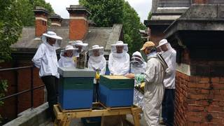 Introduction to Beekeeping  photo