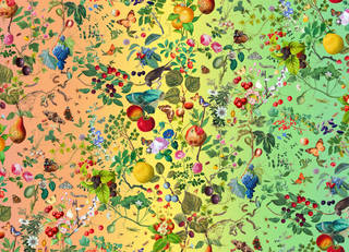 Rainbow gradient background from orange to yellow to green. Birds, butterflies and fruit - pomegranate, apple, berries on top