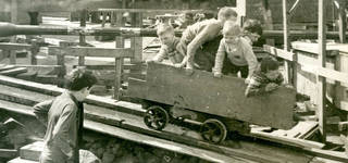 Lunchtime Lecture: Donne Buck: A lifetime in Children's Adventure Playgrounds photo