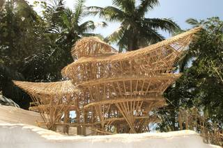 Bamboo Futures photo