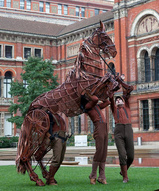 Joey puppet from War Horse, Handspring Puppet Company, 2009, Museum no.  S.3831:1 to 8-2013. © Victoria and Albert Museum, London