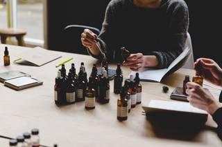 Perfume Apprentice  photo