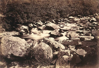 Lyndale, North Devon, photograph by Benjamin Brecknell Turner, albumen print from calotype negative, 1852, England. Museum no. PH.4-1982. © Victoria and Albert Museum, London