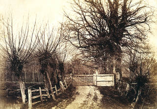 The Willowsway, Elfords, Hawkhurst, photograph by Benjamin Brecknell Turner, albumen print from Calotype negative, 1852 – 54, England. Museum no.  England. Museum no. PH.58-1982. © Victoria and Albert Museum, London