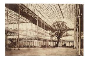 Photograph taken inside the Crystal Palace transept, showing a tree and the empty structure of the building.
