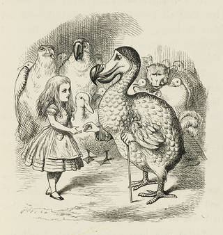 Alice and the Dodo illustrated by John Tenniel in Lewis Carroll's 'Alice's Adventures in Wonderland' first published edition, 1866, p. 35. National Art Library: 38041802039719.