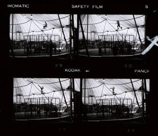 Detail from contact sheet showing Herbert Reco performing tightrope shows over a cage of lions, photograph by John Hinde, about 1943, Britain. Museum no. RPS.1184-2019. © Victoria and Albert Museum, London