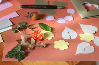 Leaves, coloured paper shapes, pencil, and card, spread out to start the activity