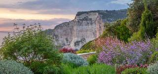 Photo for Online Talk: The Naturally Beautiful Garden