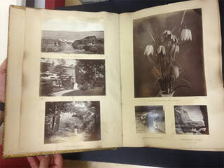 Victorian photo album containing black and white photos of cliffs and the sea, trees and flowers.