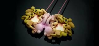 Online Workshop: Wonderland Jewellery Design photo